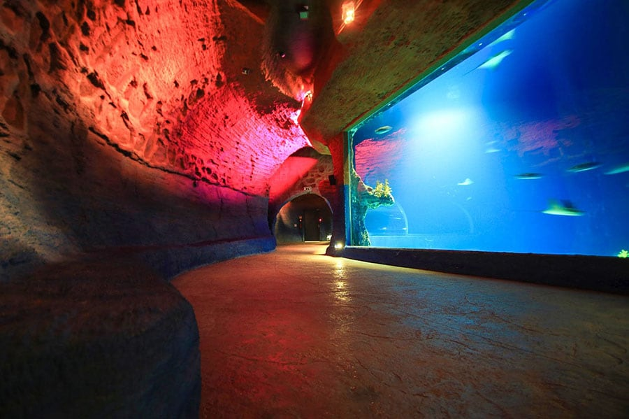 Oceanarium we wrocławskim ZOO