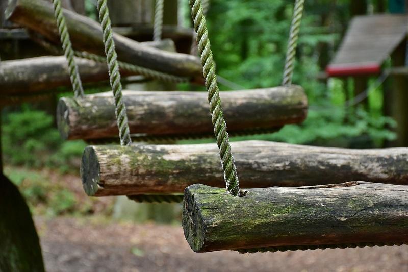Park linowy we Wrocławiu to wspaniała atrakcja podczas wakacji z dziećmi